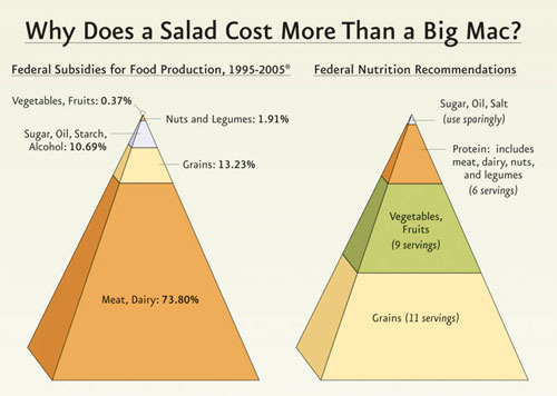 Federal Subsidies Food Pyramid