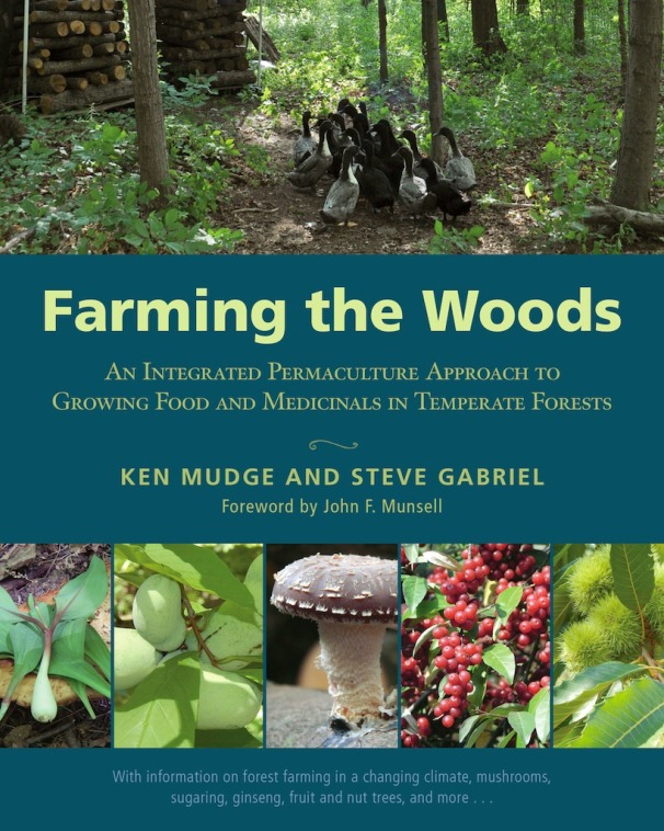 Make the Most of Your Woods with Forest Farming