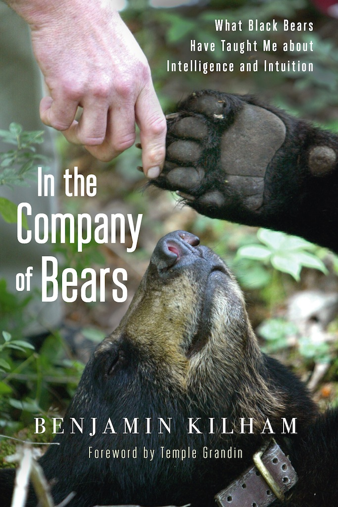 What Can Humans Learn from Bears?