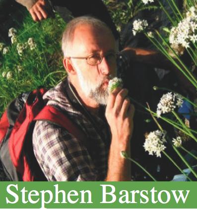 Stephen Barstow