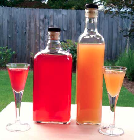 Make Your Own Fruit Wine