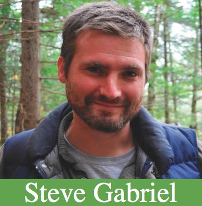 Steve Gabriel