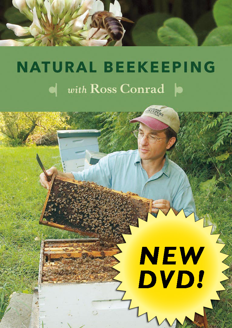 Natural Beekeeping with Ross Conrad (DVD) Cover