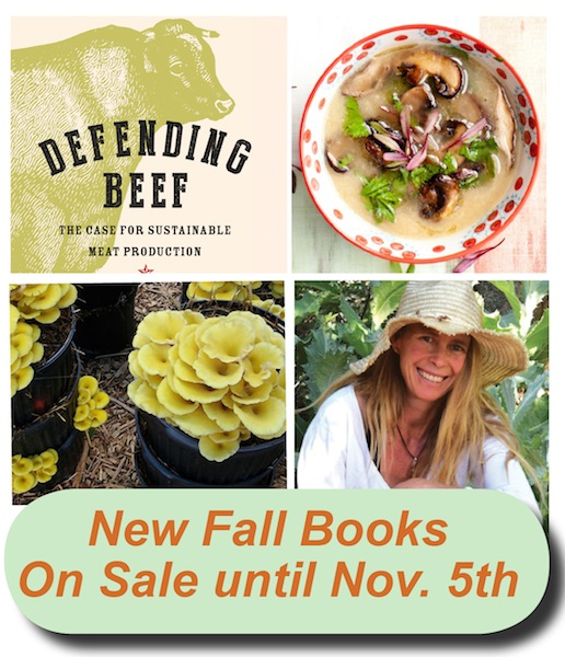 Hot off the Press: New Fall Books!