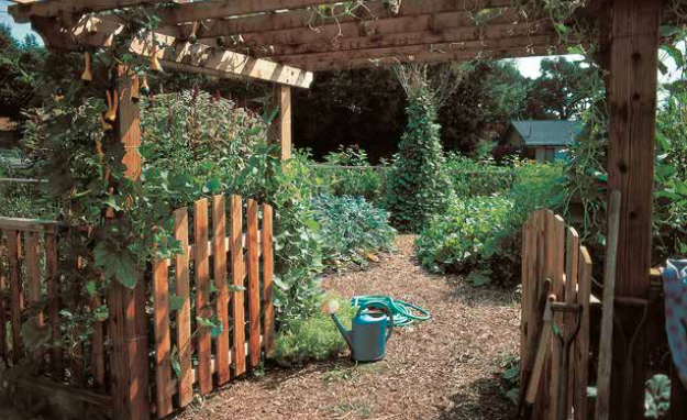 Permaculture Advice For Beginners. Hint: Start Small
