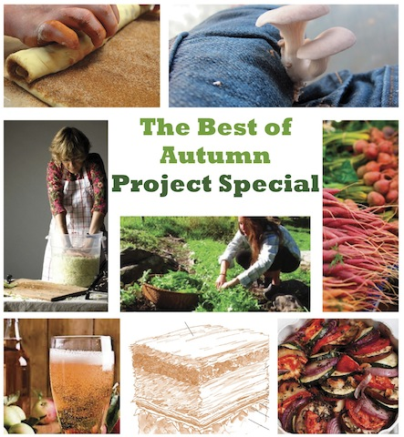 The Best of Autumn Project Special