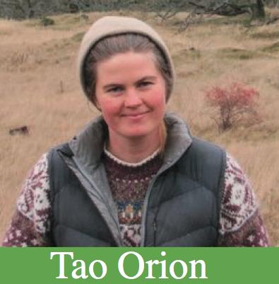 Tao Orion