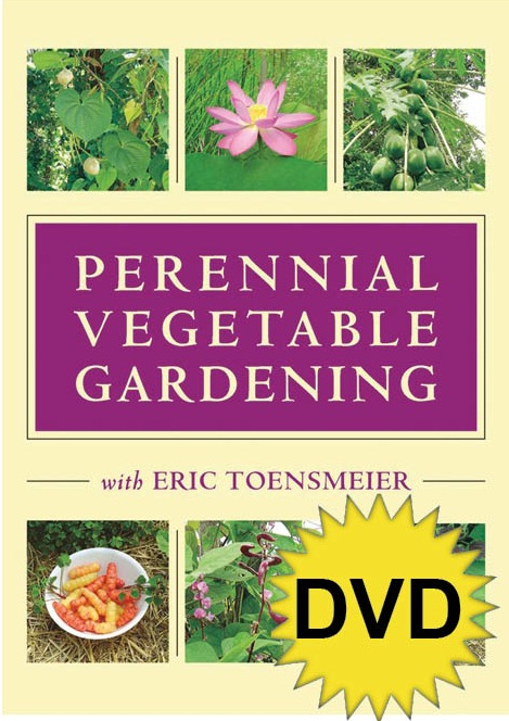 Perennial Vegetable Gardening with Eric Toensmeier (DVD) - See more at: http://www.chelseagreen.com/bookstore/item/perennial_vegetable_gardening_with_eric_toensmeier_dvd:dvd#sthash.unEmjxIc.dpuf