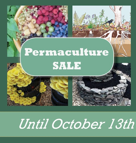 Permaculture Sale: Let nature do the heavy lifting!