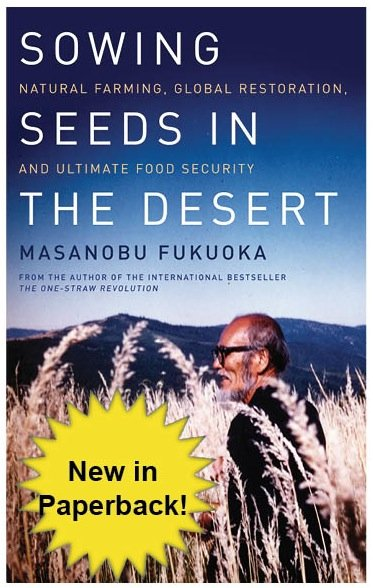 Sowing Seeds in the Desert