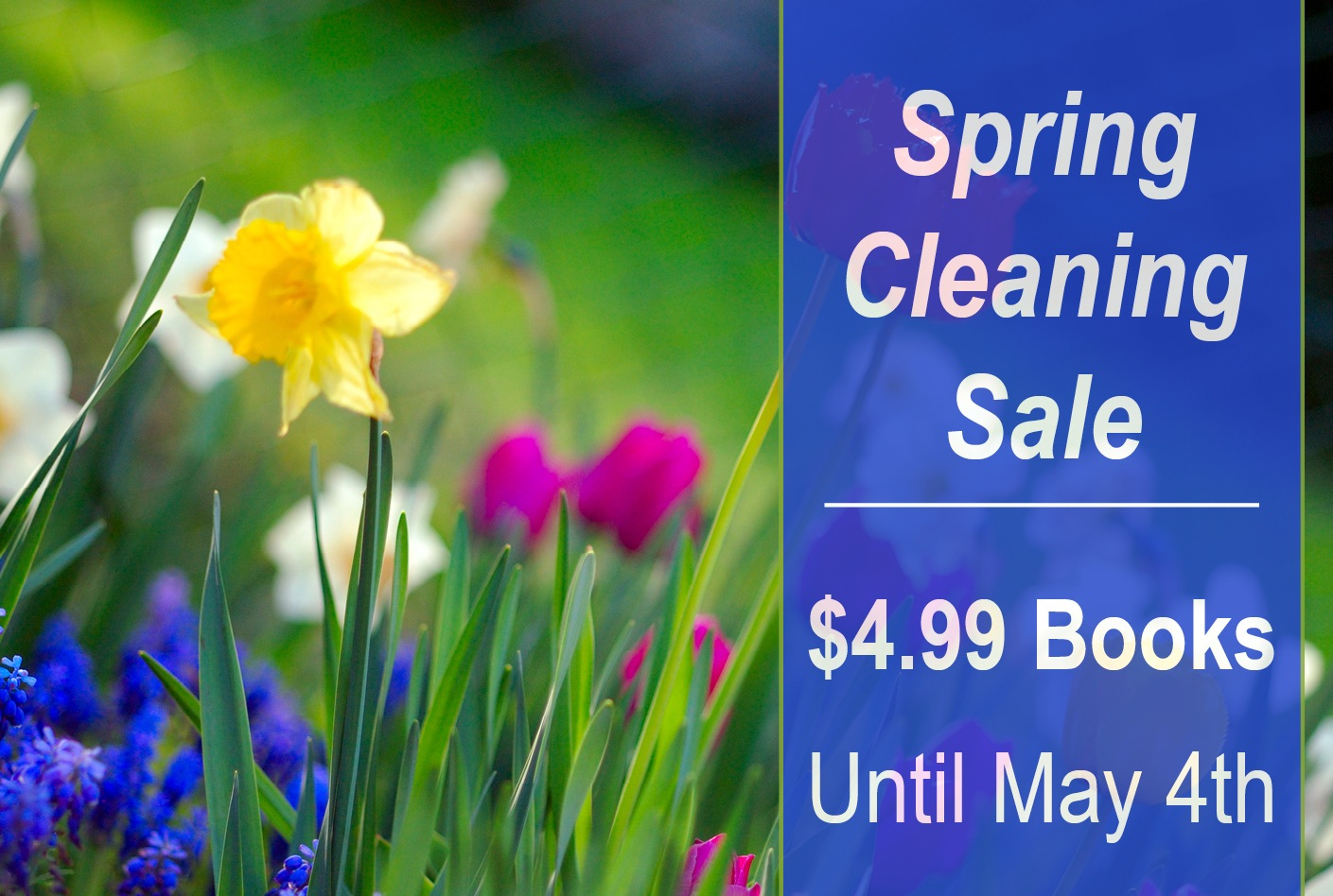 Spring Cleaning Sale: $4.99 Books