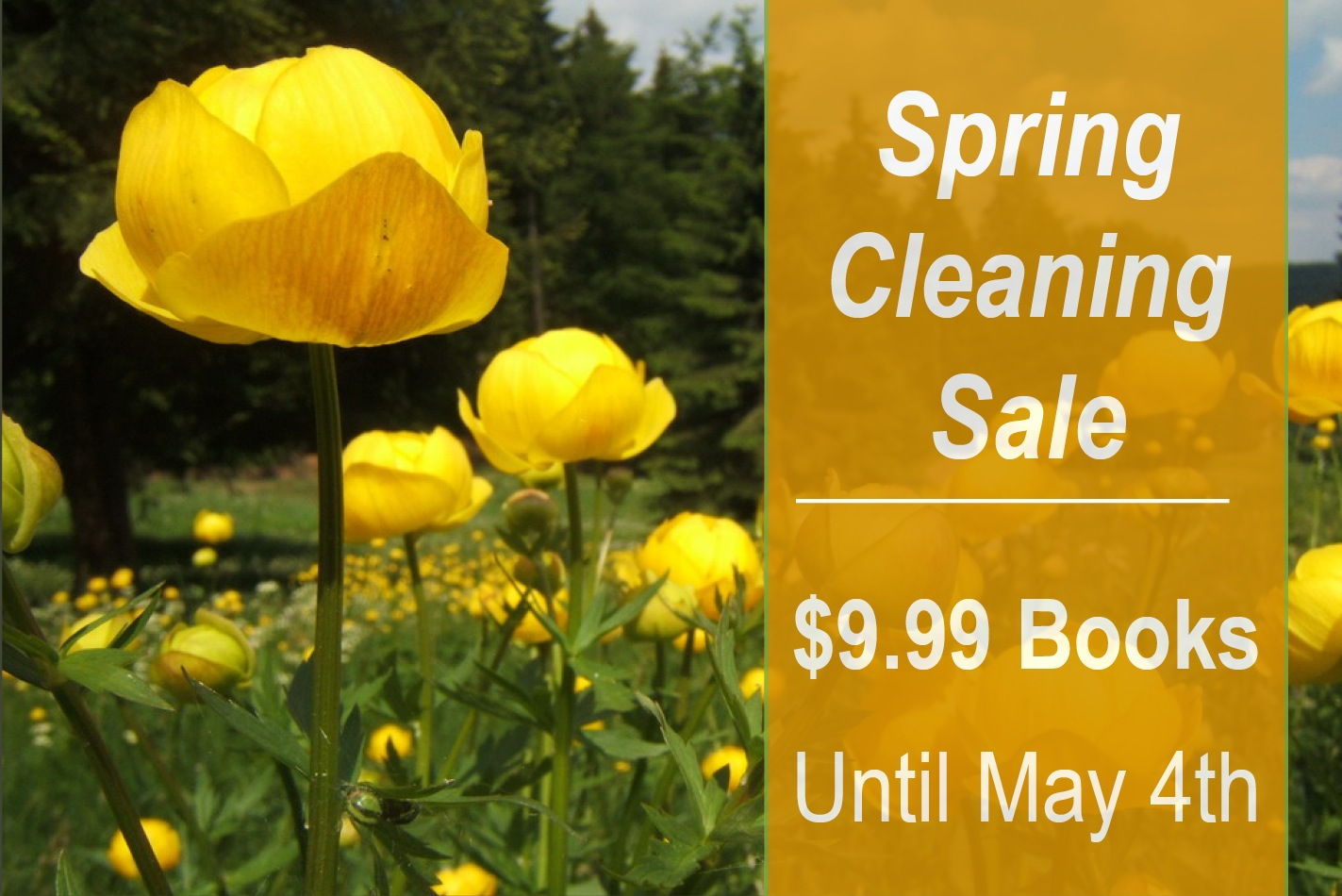 Spring Cleaning Sale: $9.99 Books