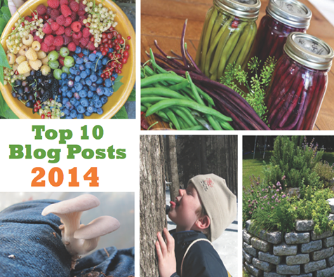 A Look Back at 2014: Our Top 10 Blog Posts