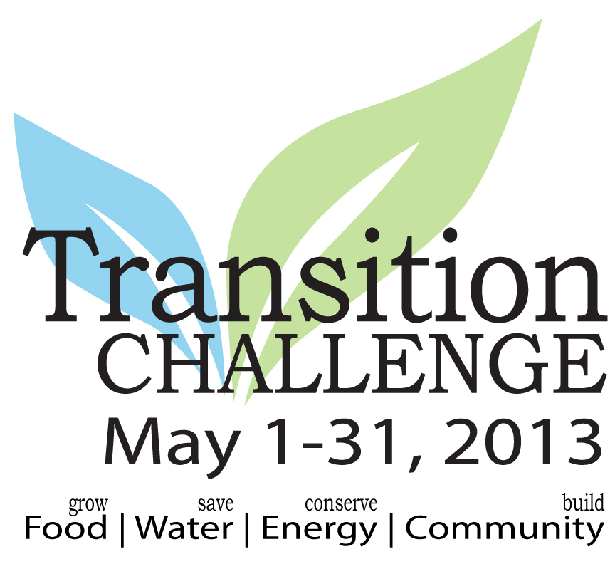 How to Turn Your Town into a Community: Join the Transition Challenge