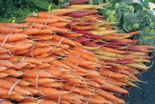 Garden Planning: 48 of the most Promising Veggies