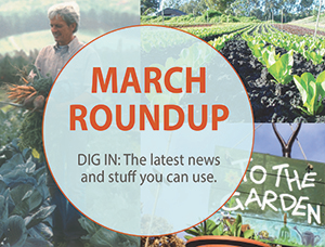 March Roundup: News, Views & Stuff You Can Use