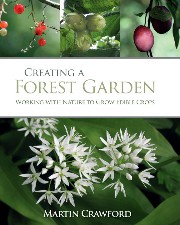 Creating a Forest Garden Cover