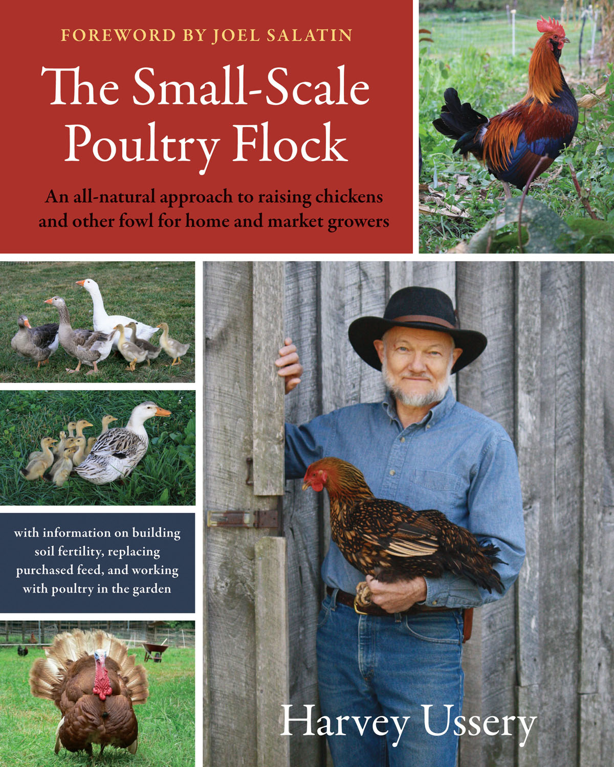 Small Scale Poultry Flock Cover