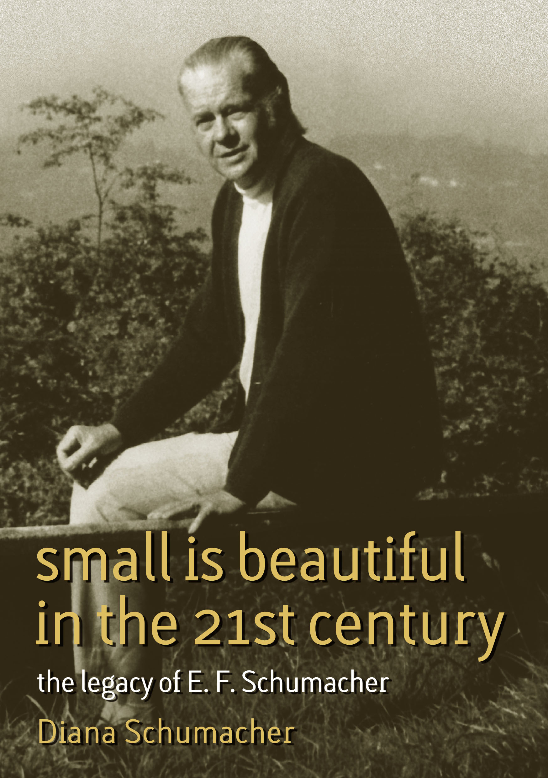 Small is Beautiful in the 21st Century Cover