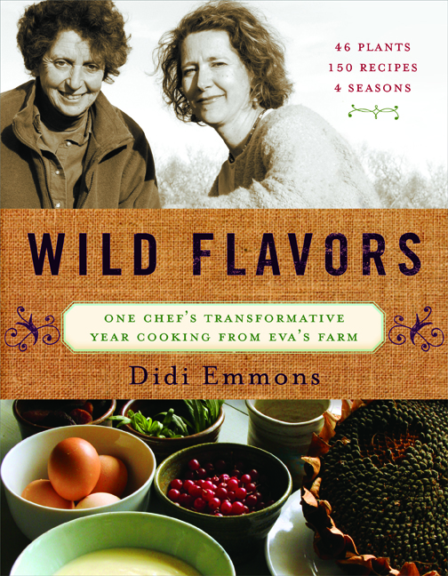 Wild Flavors Cover