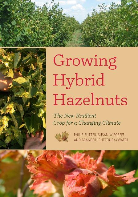 Growing Hybrid Hazelnuts