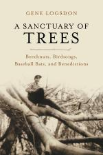 Sanctuary of Trees Cover