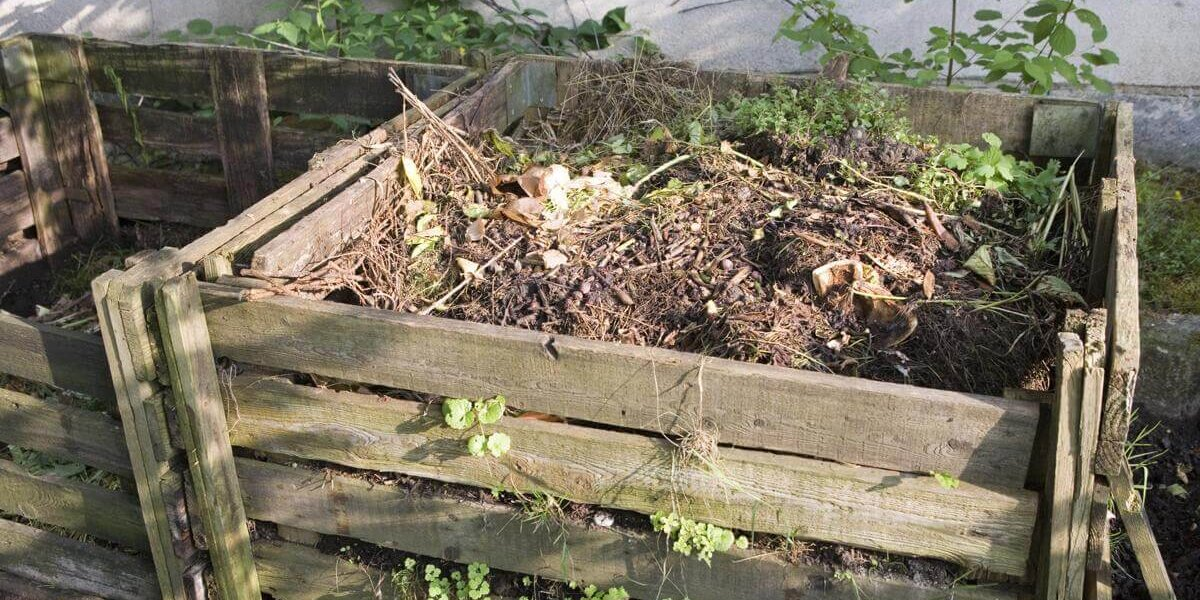 How To Start A Traditional Compost Pile In Your Yard Chelsea