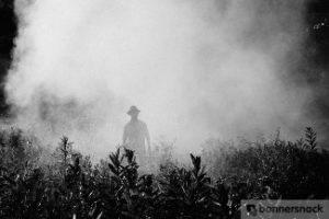 man in pesticide cloud