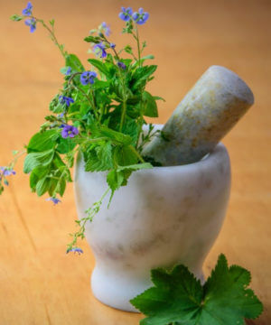 herb in herb grinder