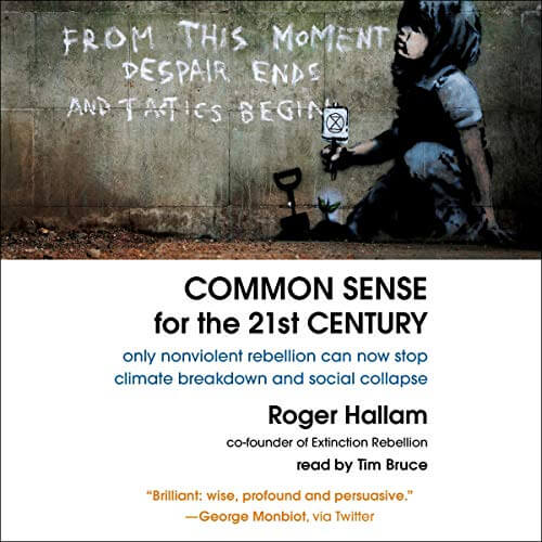common sense for the 21st century cover