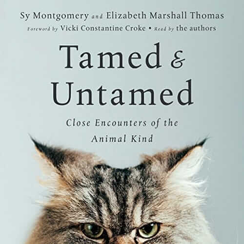 tamed and untamed audiobook cover