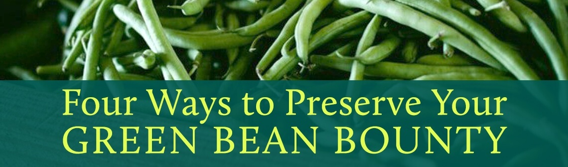 Green Bean Bounty