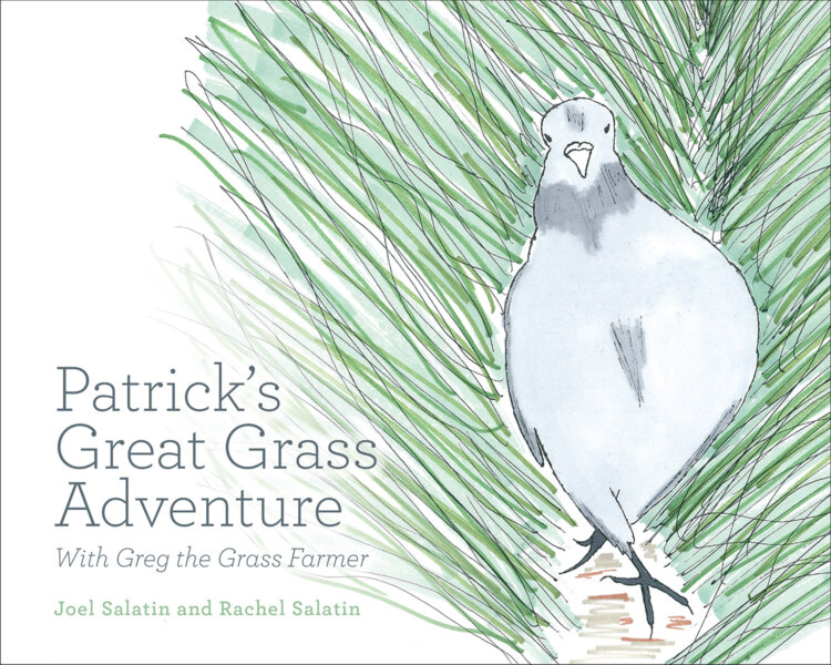 The Patrick's Great Grass Adventure cover