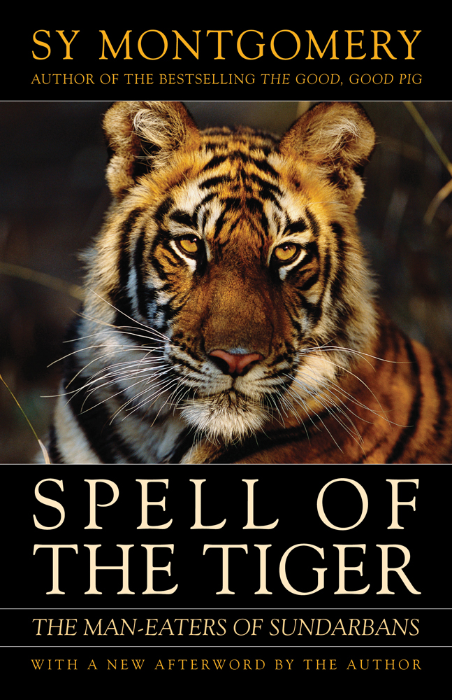 The Spell of the Tiger cover