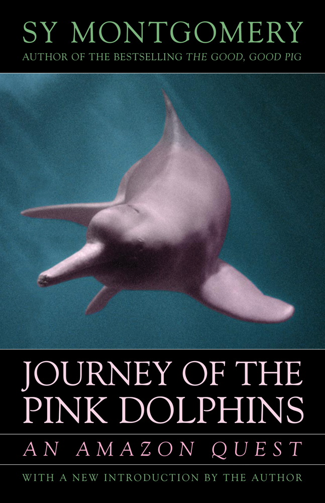 The Journey of the Pink Dolphins cover