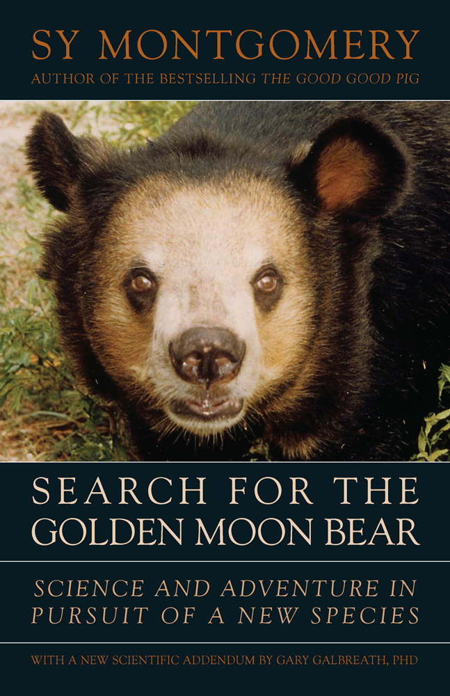 The Search for the Golden Moon Bear cover
