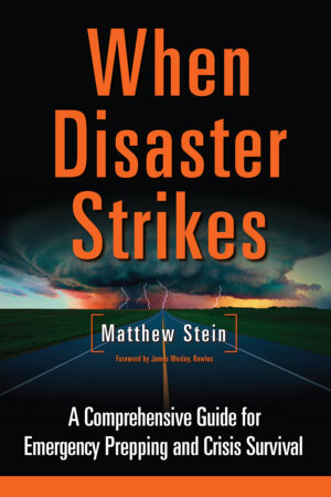 The When Disaster Strikes cover