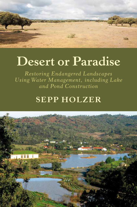 The Desert or Paradise cover