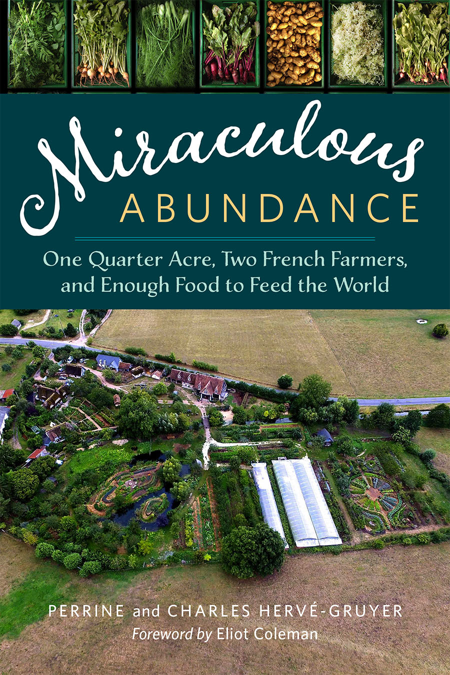 The Miraculous Abundance cover