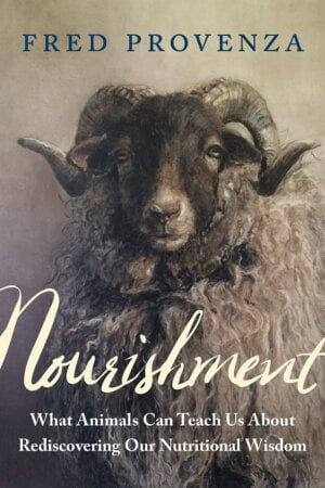 The Nourishment cover
