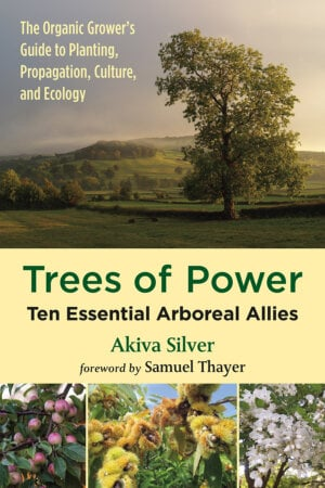 The Trees of Power cover