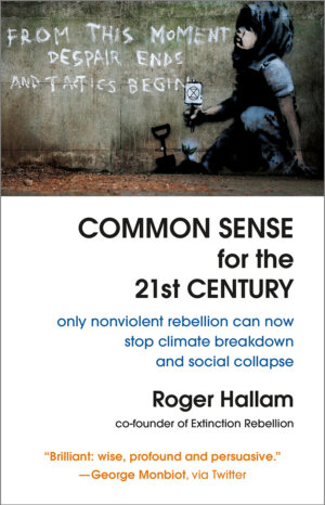 The Common Sense for the 21st Century cover