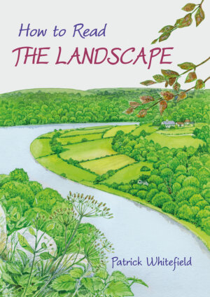 The How to Read the Landscape cover