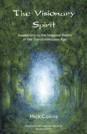 The Visionary Spirit cover