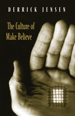 The Culture of Make Believe cover