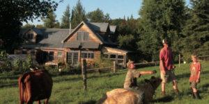 farm animals and a house