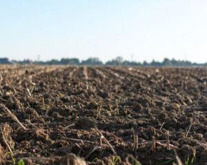 soil on farm