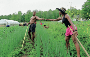 Participants in Soul Fire Farm's Black Latinx Farmers Immersion exchange a fist pump while tending to the onions