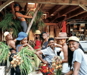 Participants in Soul Fire Farm's Black Latinx Farmers Immersion hang onions to cure in the barn