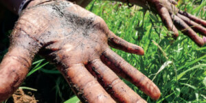hands covered in dirt